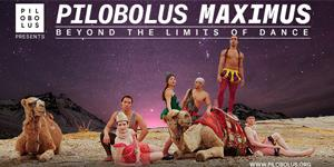 Pilobolus Maximus – Beyond The Limits of Dance